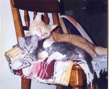 Lance & Bella 2 (resize)